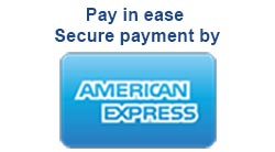 Pay in ease secure payment by american express