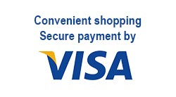 Convenient shopping secure payment by visa